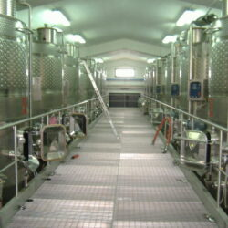 Thermo-conditioned wine-producing battery